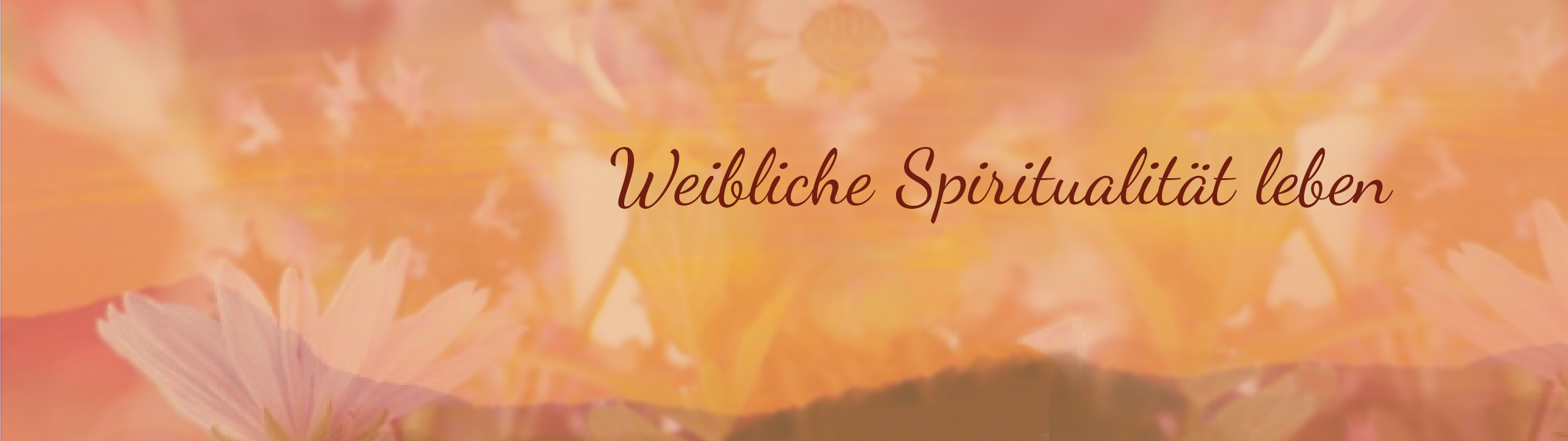 Irdana Verlag Banner
